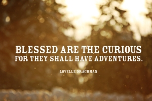Curious Quote
